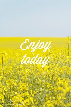 SHOP Enjoy today - quote on photo of yellow field