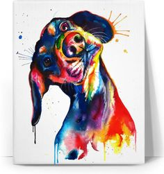 ROC Colorful Dog