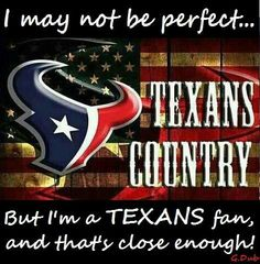 Being a Texans fan is close enough to perfect. Houston Texans Football, Football Art, Houstan Texans, Bulls On Parade, Nfl Flag, Sports Baby, Custom Flags, H Town, Texas History