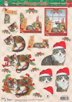 francien katten kerstvellen - Google zoeken