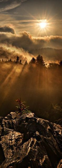 Appalachian Dawn Print by Robert Charity. Appalachian dawn in the Smoky Mountains at Charlie's Bunion on the Tennessee / North Carolina border Beautiful World, Beautiful Places, Beautiful Pictures, Beautiful Beautiful, All Nature, Amazing Nature, Foto Poster, Ciel, Belle Photo