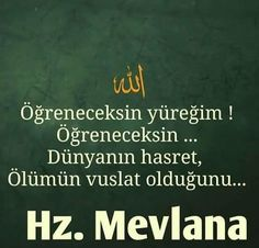 mevlana rumi Meaningful Lyrics, Allah Islam, Lucid Dreaming, Open Book, Sufi, Poems, How To Plan, Sayings, Quotes