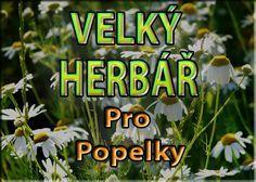 VELKY BYLINKOVÝ HERBÁŘ PRO POPELKY Healing Herbs, Medicinal Herbs, Homemade Cosmetics, Nordic Interior, Kraut, Herb Garden, Healthy Life, Herbalism, Flora