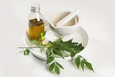 Neem leaves have anti-inflammatory, antibacterial, and antifungal properties which prevent and cure dandruff. Here is how you can use neem for dandruff. How To Cure Dandruff, Oils For Dandruff, Dandruff Remedy, Hair Fall Remedy, Home Remedies For Hair, Hair Remedies, Neem Oil For Hair, Hair Oil, Hair Fall Control