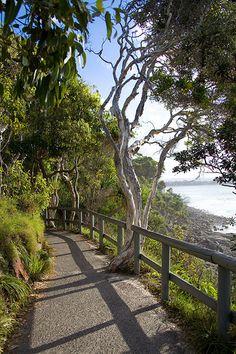 Noosa National Park, Queensland, Australia www.facebook.com/loveswish