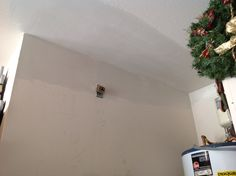 Replaced damaged Sheetrock from flood