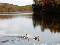 Pine Lake State Park, Eldora, IA