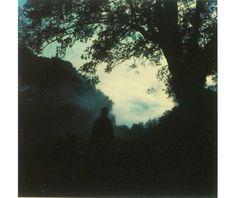 Andrei Tarkovsky, Polaroid Series