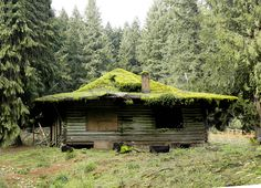 """""""Once a family getaway, this mossy roofed cabin is now abandoned. Near ZigZag, in NW Oregon."""""""