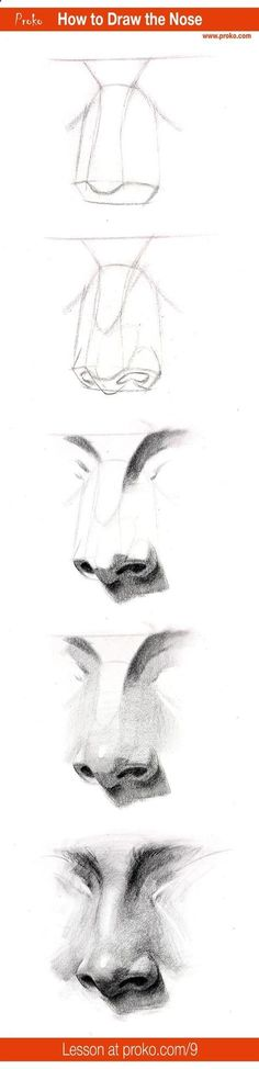 Drawing Pencil Portraits - Draw a realistic nose with this step-by-step instruction. Full drawing lesson at proko.com/9 Discover The Secrets Of Drawing Realistic Pencil Portraits