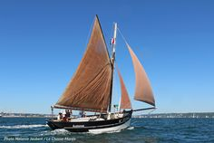 Sailing Yachts, Catamaran, Sailing Ships, Small Sailboats, Classic Sailing, Sail Away, Wooden Boats, Tall Ships, Brittany