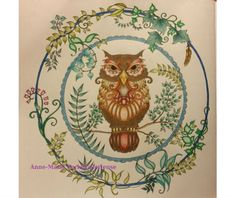 """An intricate owl from the """"Enchanted Forest"""" book. Adult coloring books good for your health!"""