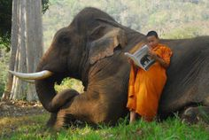 Monk in Thailand  Photography by: Gary Santiago Issac