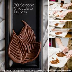 http://www.cupcakeproject.com/2013/03/amazing-30-second-chocolate-leaves.html