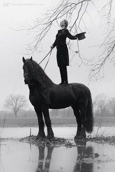 well, i don't like the horse (friesian) but il really like the photo itself. Equine Photography: Gosia Makosa on Cavalcade All The Pretty Horses, Beautiful Horses, Animals Beautiful, Zebras, Arte Equina, Black Horses, Friesian Horse, Equine Art, Equine Photography