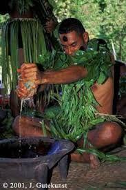 fiji culture - Google Search
