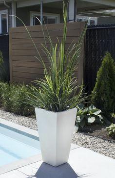 Herbes de rivière artificielles dans un pot en fibre de verre blanc. Plusieurs autres modèles disponibles. Évitez l'entretien et donnez un look moderne à votre cour en un tour de main!