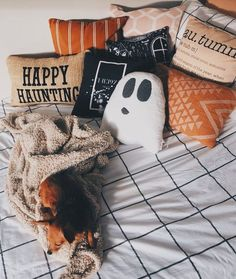halloween aesthetic Image uploaded by zowi . Find images and videos about autumn, fall and Halloween on We Heart It - the app to get lost in what you love. Halloween Tags, Casa Halloween, Halloween Bedroom, Halloween Costumes, Halloween Pillows, Halloween Christmas, Halloween Halloween, Halloween Makeup, Halloween Wishes