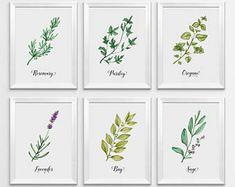 Herbs Print, Watercolor Herbs, Kitchen Print, Kitchen Decor, Herbs Wall Art, Herbs Printable, Kitchen Printable, Botanical Printable, Herbs