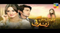 Choti Si Zindagi Hum Tv Pakistani Latest Drama timing