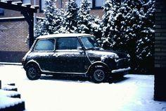 Mini Jubilee 1979