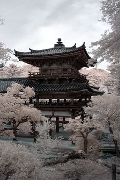 Byodoin, Uji, Kyoto I miss Japan so much it hurts Architecture Du Japon, Asian Architecture, Japanese Temple, Japanese Landscape, Japanese Nature, Art Asiatique, Art Japonais, Japan Art, Japan Japan
