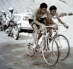 Tour de France 1975, stage 15, Nice - Pra Loup, Eddy Merckx and  Felice Gimondi.