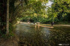 Bambou rafting chiang mai