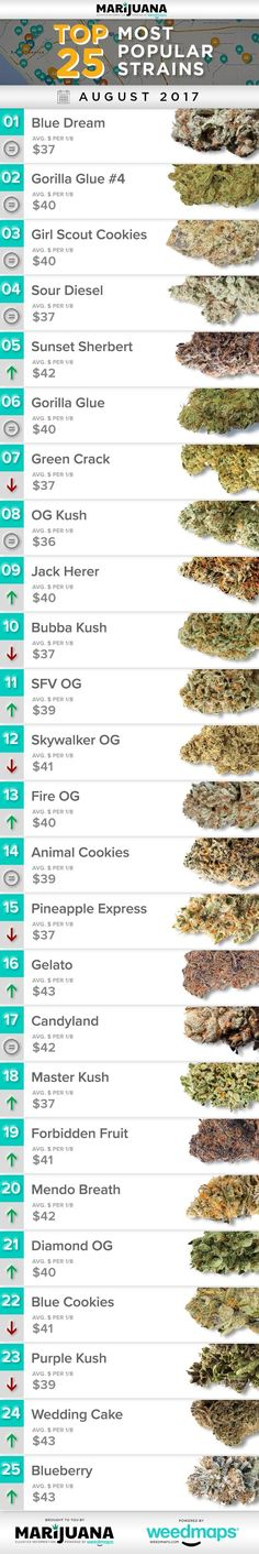 25 Most Popular Marijuana Strains in August