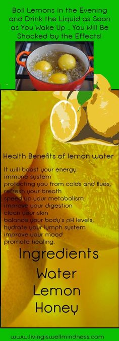 Boil Lemons in the Evening and Drink the Liquid as Soon as You Wake Up You Will Be Shocked by the Effects! - Living Wellmindness Click the image for more info. Healthy Detox, Healthy Drinks, Diet Detox, Detox Foods, Boil Lemons, Health And Wellness, Health Tips, Lemon Health Benefits, Natural Detox Drinks