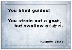 """Matthew 23:24...""""You blind guides!"""""""