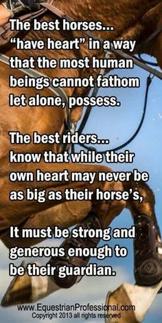 faith of the horse&rider