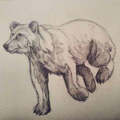 Niedźwiedziem czas zacząć przygotowania do magisterki.. #worinprogress #drawing #bear