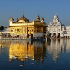 Située au nord-ouest de l'Inde Amritsar abrite lieu saint : le spectaculaire Temple d'or!  #voyagevoyage #destinations #Inde #voyage #amritsar #Temple #blogvoyage #instatravel
