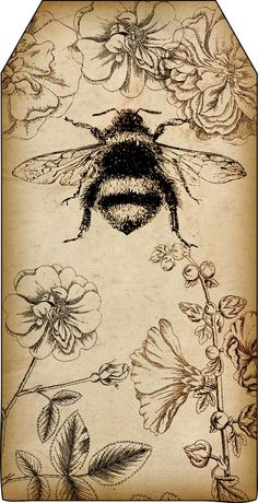 Bountiful Heirlooms Free Printables Bee And Beekeeping Tags - Free Printables Bee And Beekeeping Tags Tags Are About X Inches And Yes I Am Bee Obsessed Im Also Reposting These Two Bee Printables Since They Were Posted With Items Not Related To Éphémères Vintage, Vintage Prints, Vintage Cards, Vintage Ideas, Vintage Travel, Vintage Images, Bee Art, Tatoo Art, Tattoo Drawings