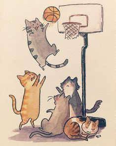 a random doodle because I haven't drawn anything personal in forever. It makes no sense   .  .  .  #kuretake #basketball #cats #catsofinstagram #catstagram #catsketball #watercolor #doodle