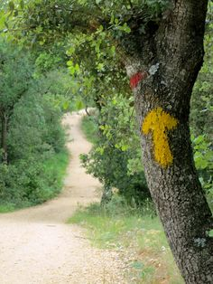 Invocation and Prayer ☽ Navigating the Mystery ☽ Pilgrimage, Camino de Santiago.