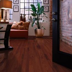 images of rooms with hardwood floors - Google Search