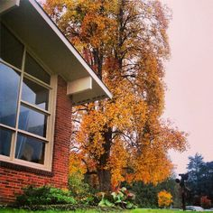 Fall on campus, 2013