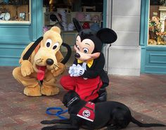 Pluto & Mickey sign autograph book for service dog in training. <3