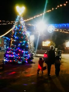 For kids from 1 to 92 : Christmas at Amerton Farm, Staffordshire – Dirt, Diggers and Dinosaurs Real Reindeer, 4 Year Olds, Outdoor Fun, Dinosaurs, Sweet Treats, Adventure, Country, Christmas, Kids
