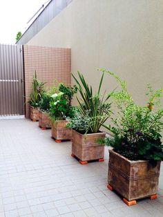 マンション専用庭植栽 / ナチュラルガーデン / ガーデンデザイン Garden Design / Balcony terrace planting Small Terrace, Terrace Garden, Container Plants, Container Gardening, Clinic Design, Natural Garden, Small Gardens, Garden Planning, Flower Arrangements