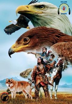 Native American Prayers, Native American Spirituality, Native American Wolf, American Crow, Native American Children, Native American Wisdom, Native American Pictures, Native American Artwork, Native American Beauty