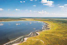 Dit gebeur wanneer riviere en strome uit suidelike Angola in die pan in. South Africa, Southern, Beach, Places, Water, Destinations, Wings, Photography, Van