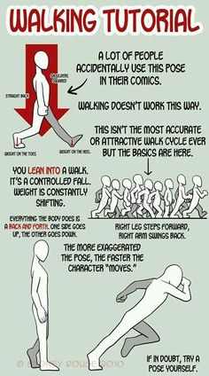 Detalles anatomía