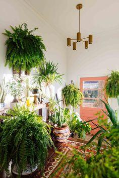 Urban jungle hal met Perzisch tapijt en koraalkleurige deur. Tropische entree: check! #houseplantsdecor