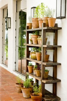 Herbs in terracotta -- wood shelf - this would be so good beside a potting bench