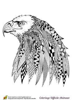 tu peux participer à la réalisation de ce dessin très artistique d'une tête d'aigle en la coloriant