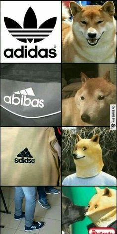 memes hilariantes mais populares do mês passado Collection