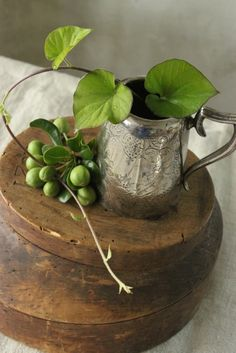 greenery + old silver plate pitcher | collectibles + home decor #vintage